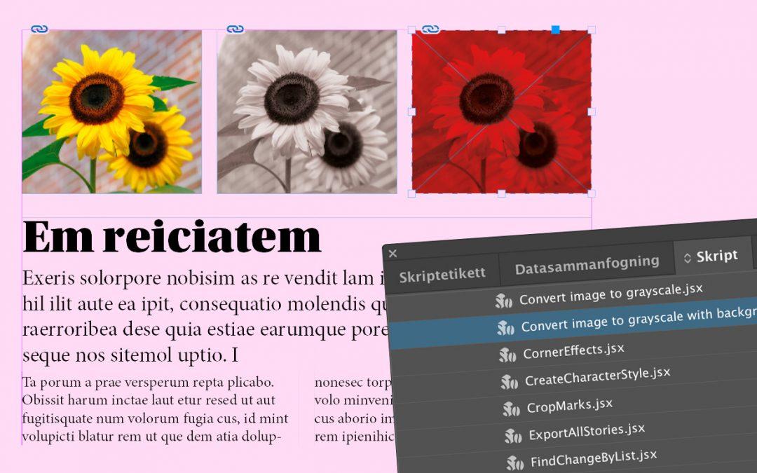 Färgbilder till svartvitt (gråskala) i InDesign